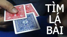 Hướng dẫn ảo thuật tìm lá bài khán giả chọn cực ngầu
