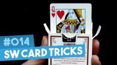 Self Working Card Tricks – Ảo thuật bài toán học – Tập 14