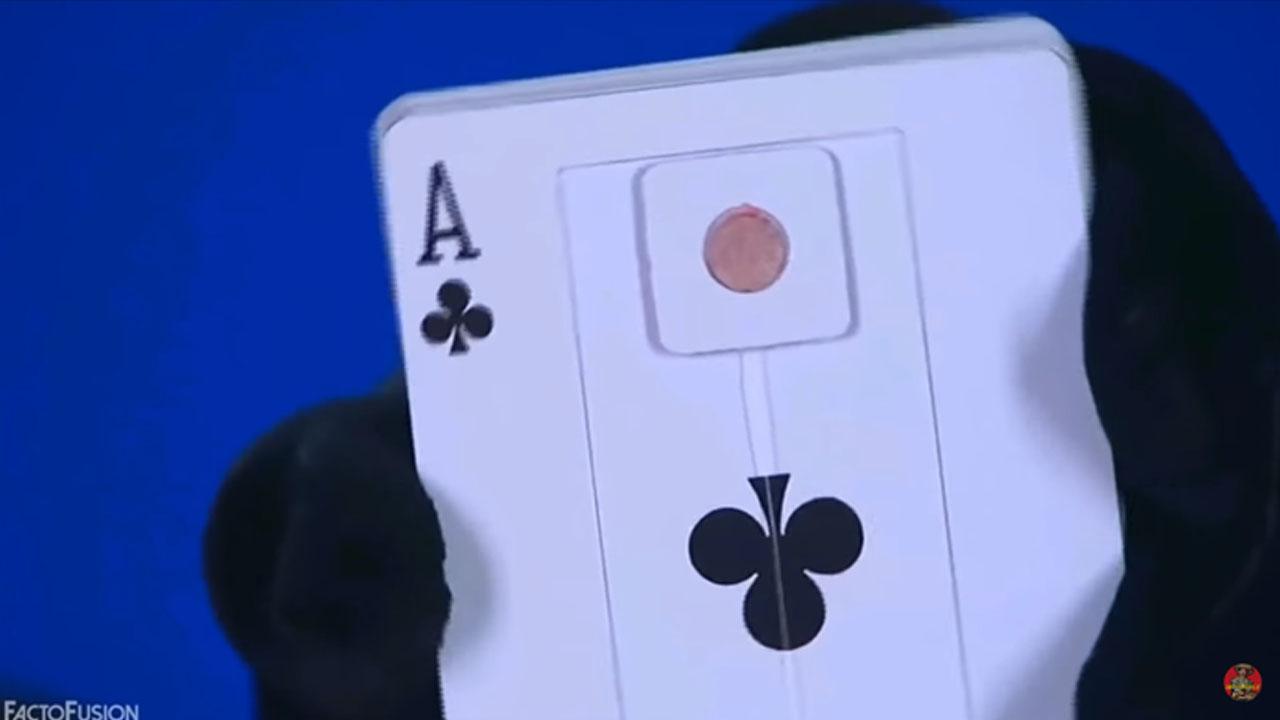 bien-mat-card_0003_3